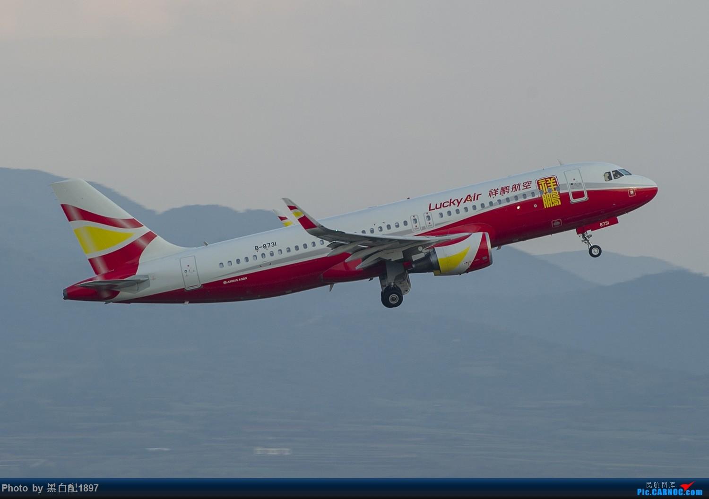 Re:[原创]国庆长水二日游之二 AIRBUS A320-200 B-8731 中国昆明长水国际机场