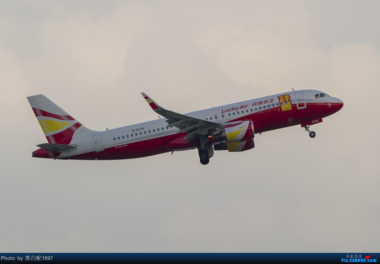 Re:[原创]国庆长水二日游之二 AIRBUS A320-200 B-8732 中国昆明长水国际机场