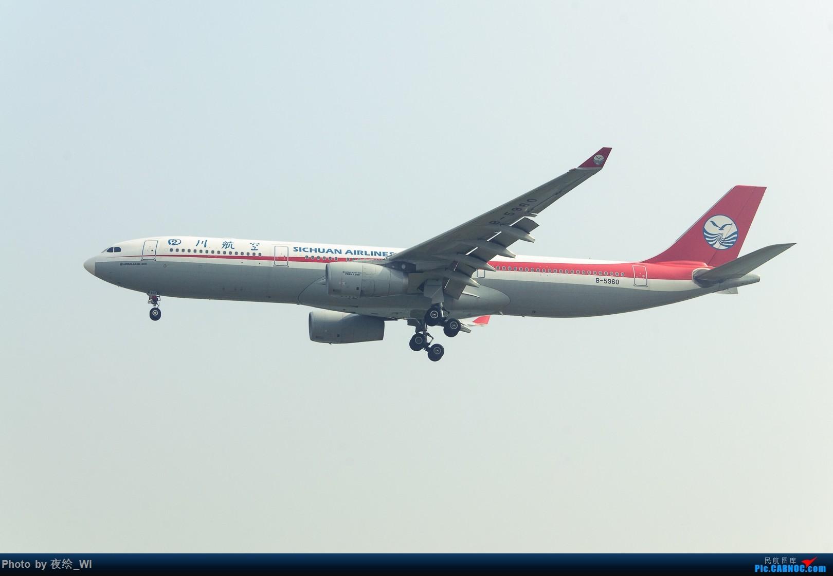 Re:[原创]【PEK】十月初雾霾下的国航牡丹及787 AIRBUS A330-300 B-5960 中国北京首都国际机场
