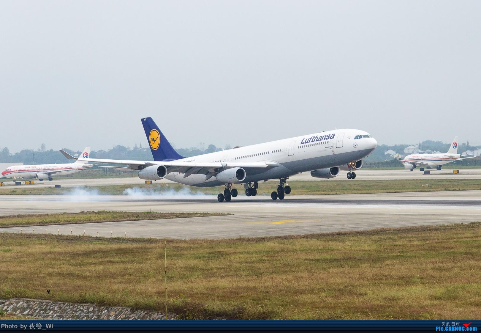 Re:[原创]【NKG】生日也要拍飞机,珍惜南京久违的单跑运行时光 AIRBUS A340-300 D-AIGT 中国南京禄口国际机场