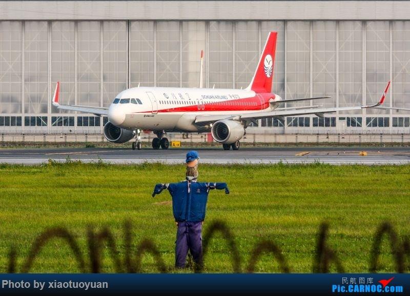 Re:[原创]9月2日于沈阳桃仙 AIRBUS A320-200 B-8372 中国沈阳桃仙国际机场