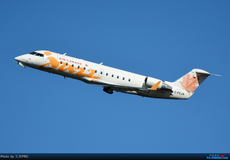 Re:[原创]DCA拍机:蓝天下的华盛顿里根机场 CRJ-200 C-FEJA 华盛顿里根机场