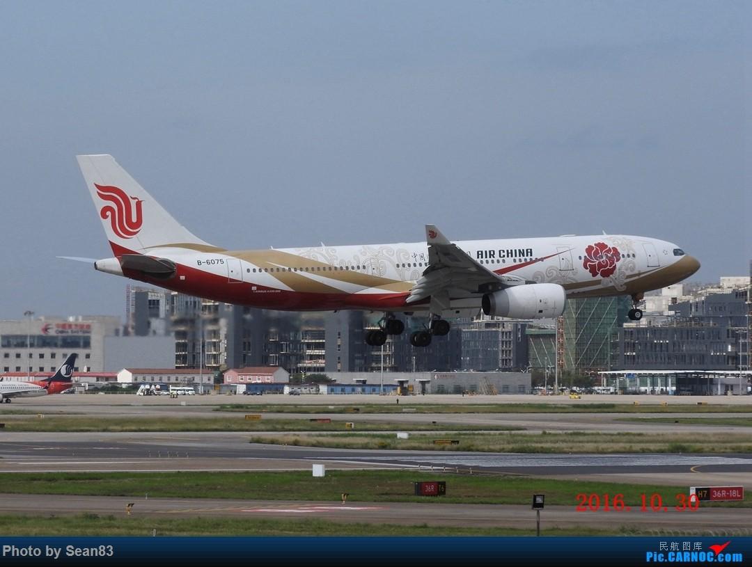 Re:[原创](SHA)好天气迎来厦航B787首航京沪 AIRBUS A330-200 B-6075 上海虹桥机场