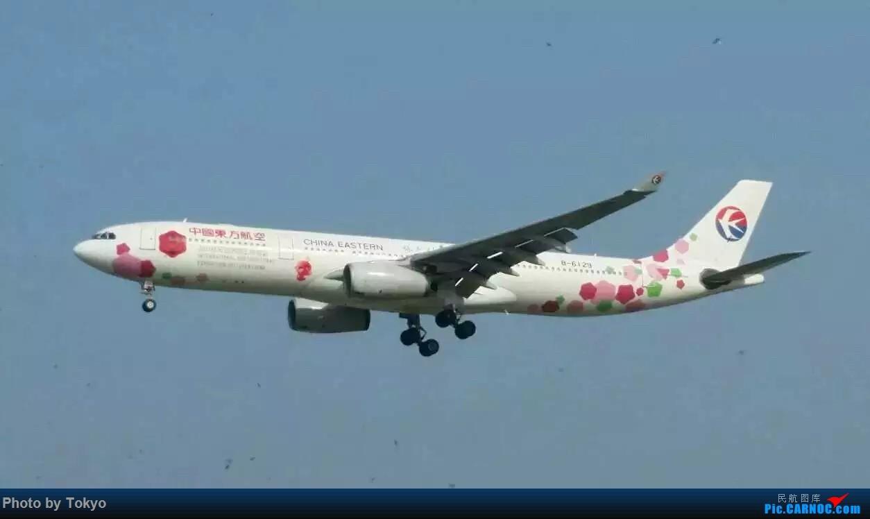 Re:[原创]330 AIRBUS A330-300 B-6129