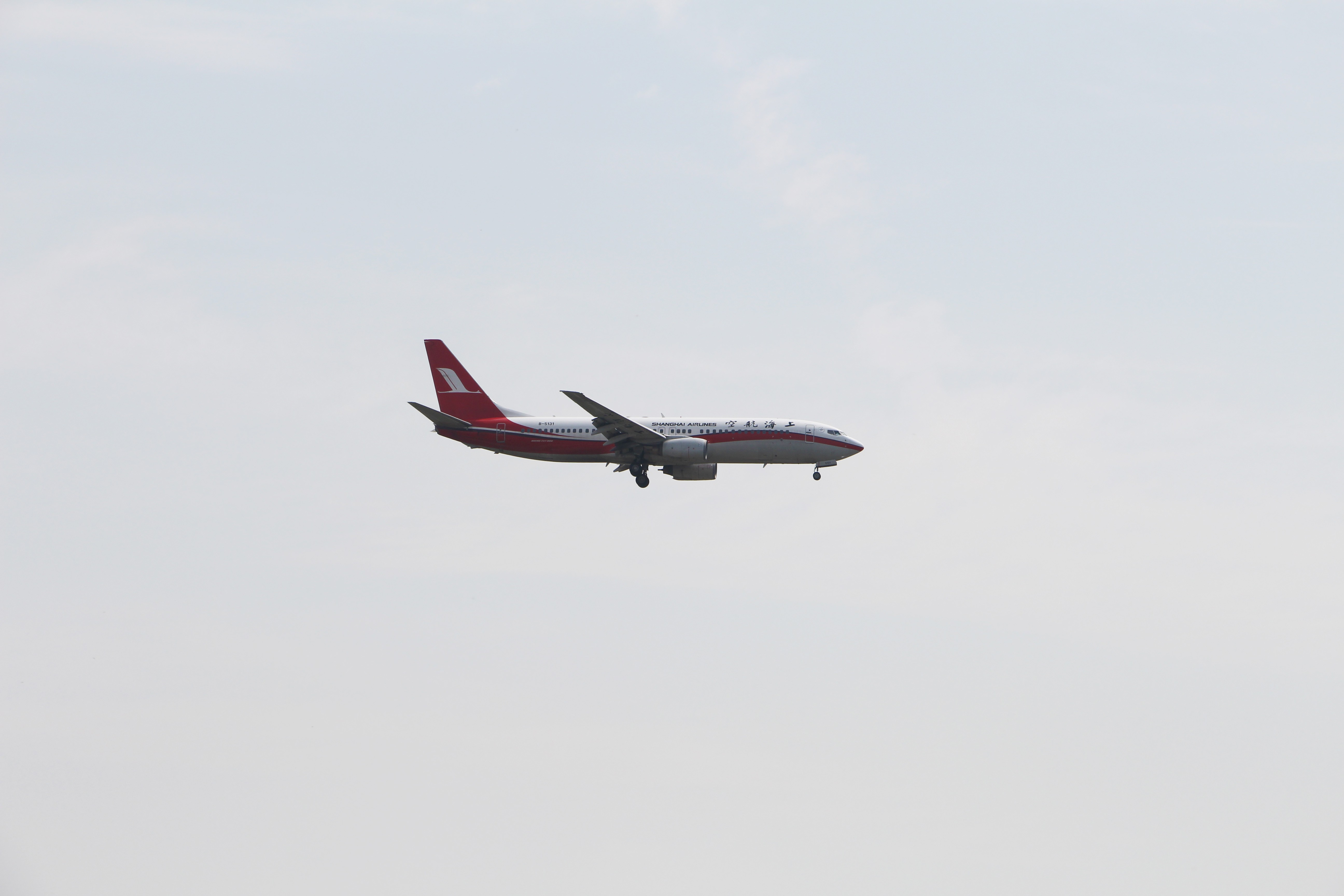Re:[原创]浦东拍机大作战 BOEING 737-800 B-5131 中国上海浦东国际机场
