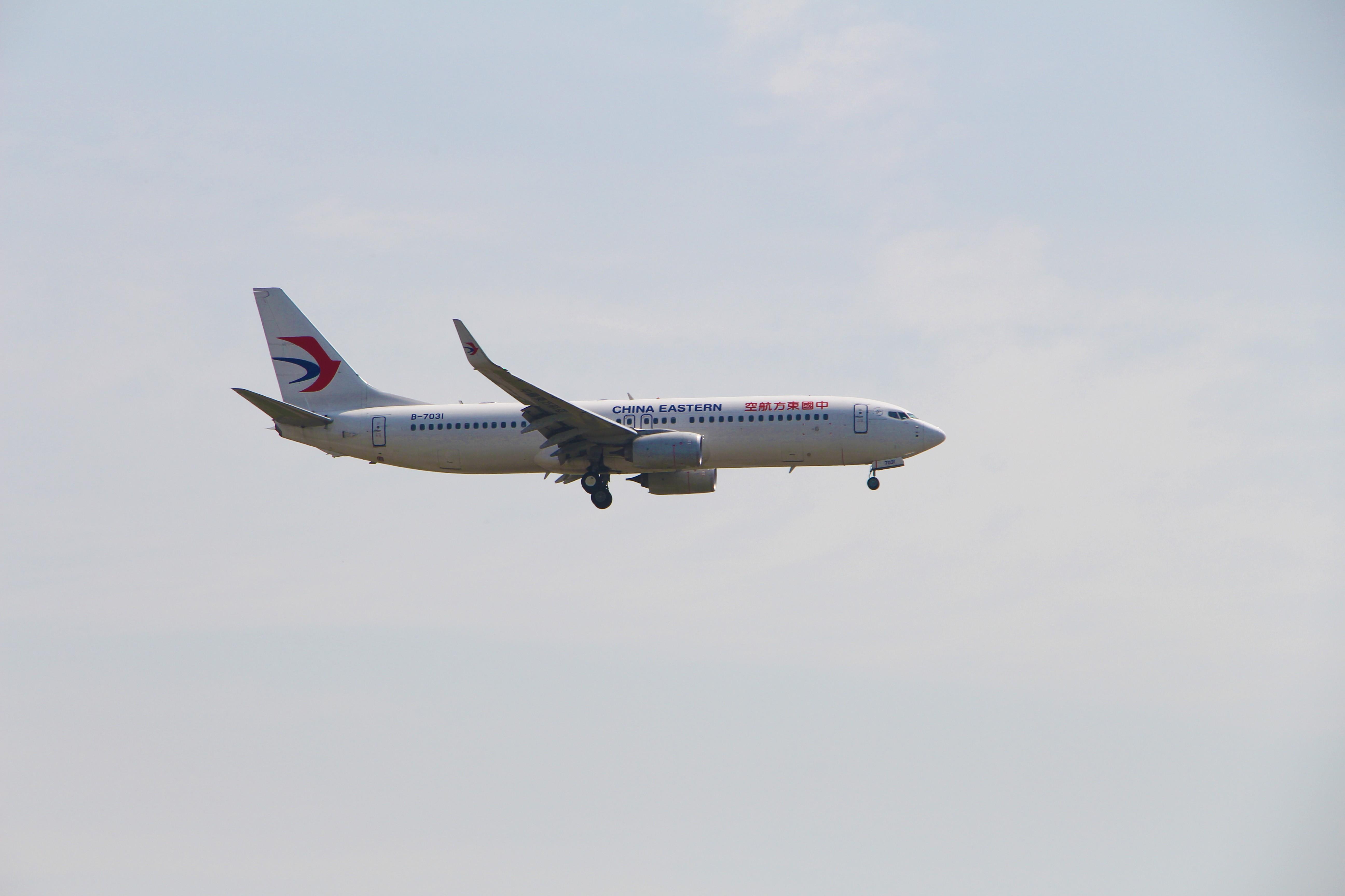 Re:[原创]浦东拍机大作战 BOEING 737-800 B-7031 中国上海浦东国际机场