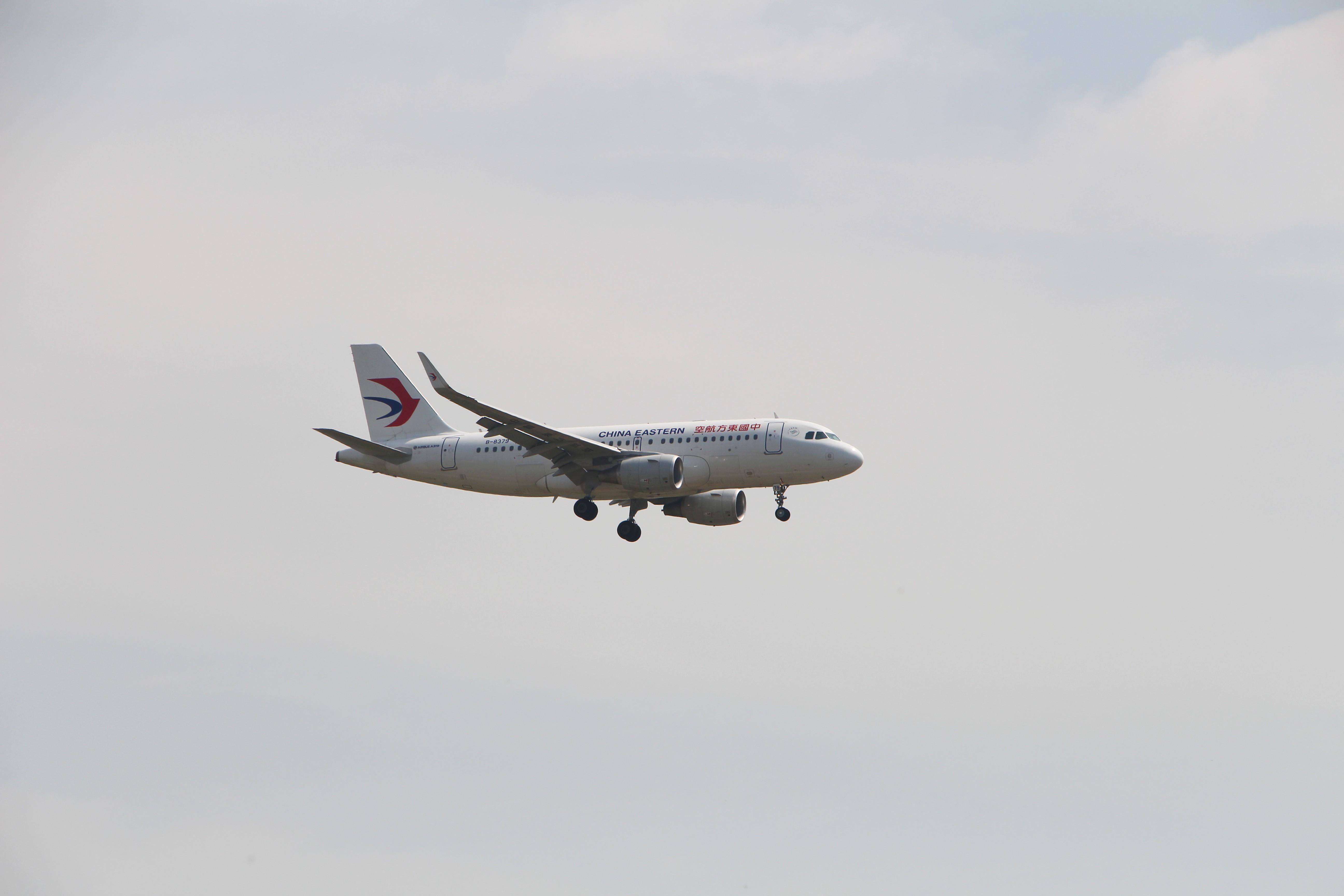 Re:[原创]浦东拍机大作战 AIRBUS A319-100 B-8379 中国上海浦东国际机场