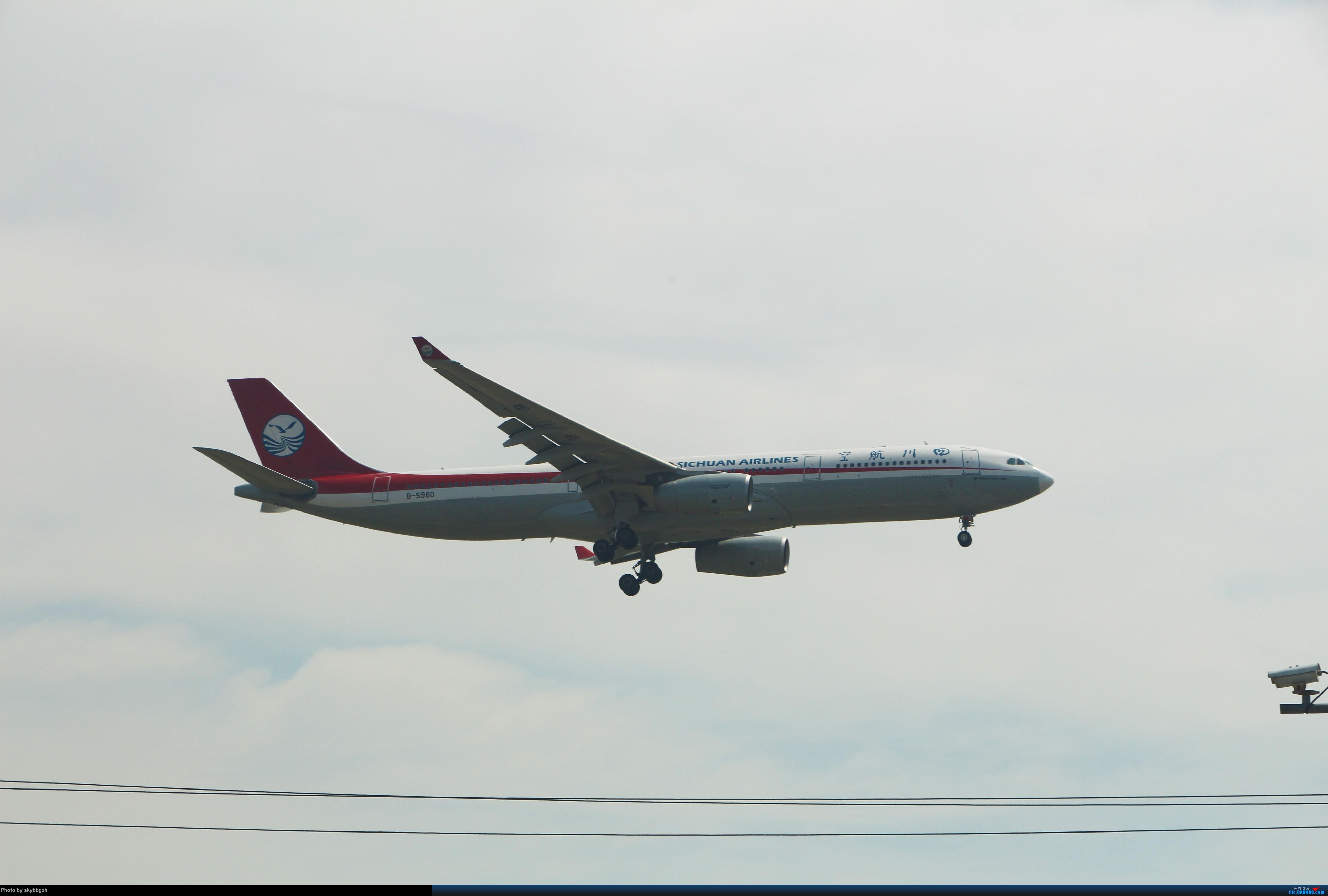 Re:[原创]浦东拍机大作战 AIRBUS A330-300 B-5960 中国上海浦东国际机场