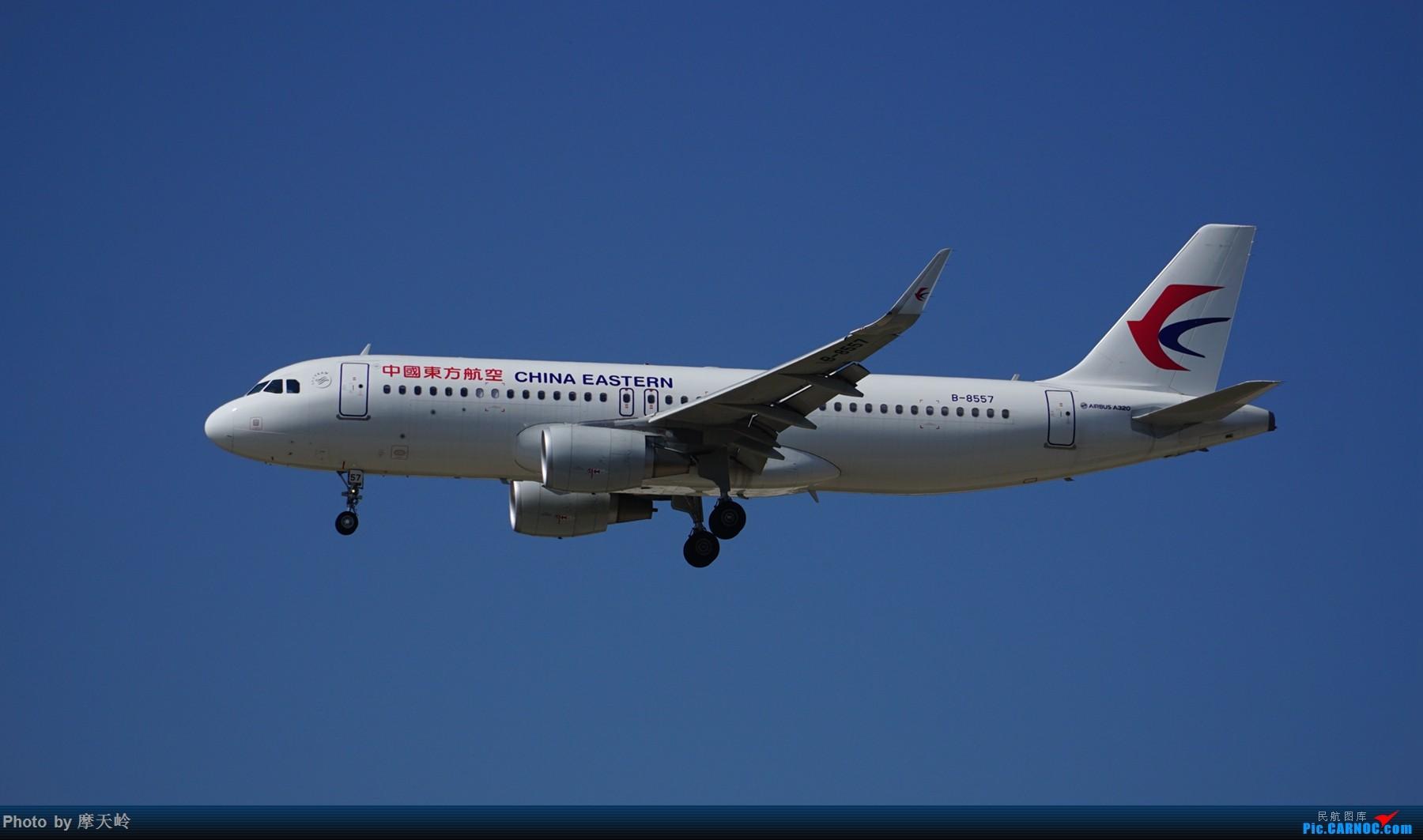 Re:[原创]长水东跑道 AIRBUS A320-200 B-8557 中国昆明长水国际机场
