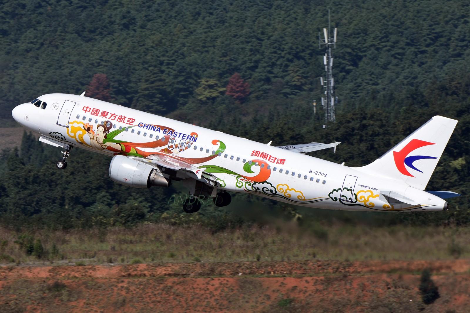 Re:[原创]=====有空就要来几发,不能懈怠===== AIRBUS A320-200 B-2209 中国昆明长水国际机场