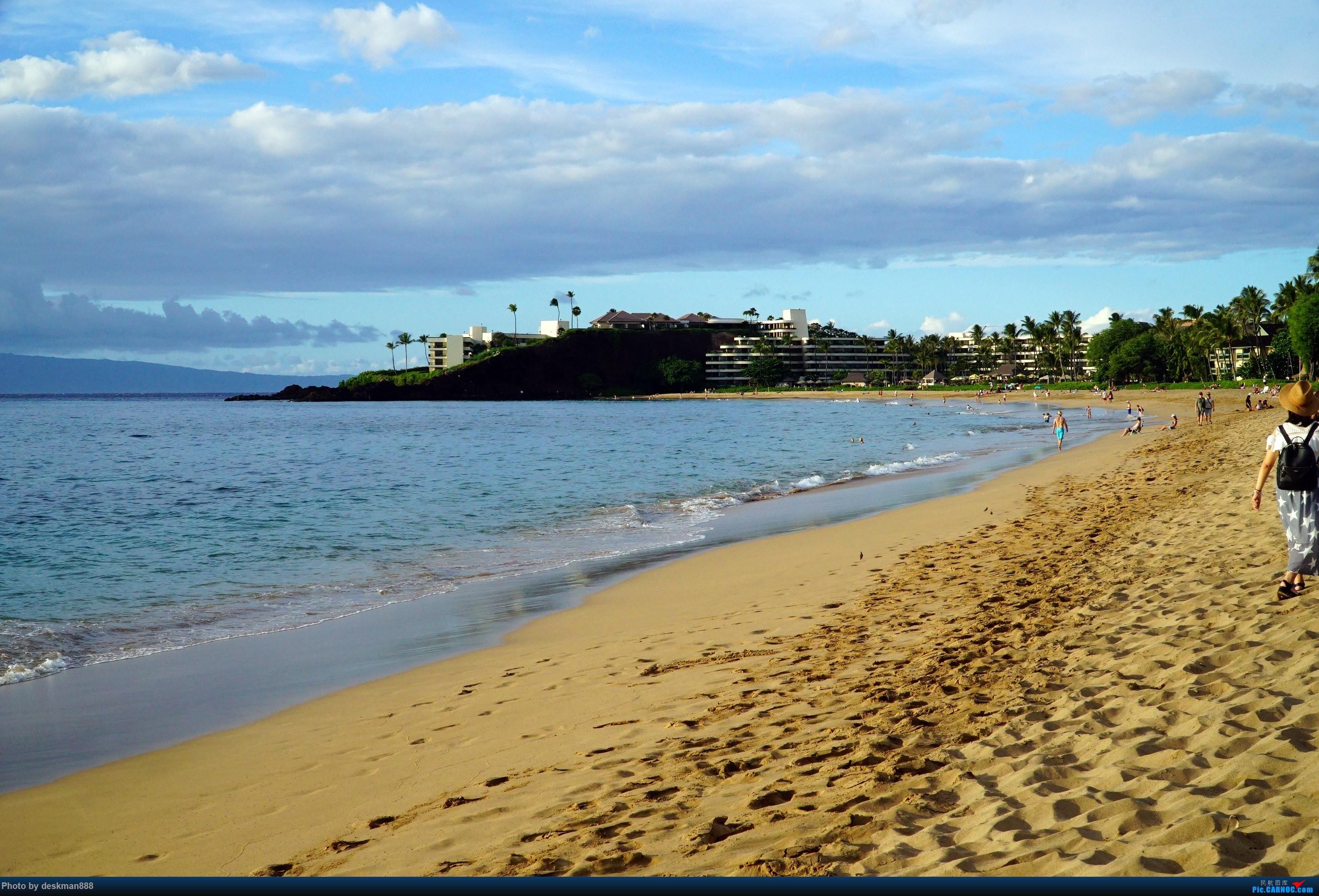 >>[原创]阳光,沙滩,碧海,椰子树——国庆夏威夷之行(上)首次体验