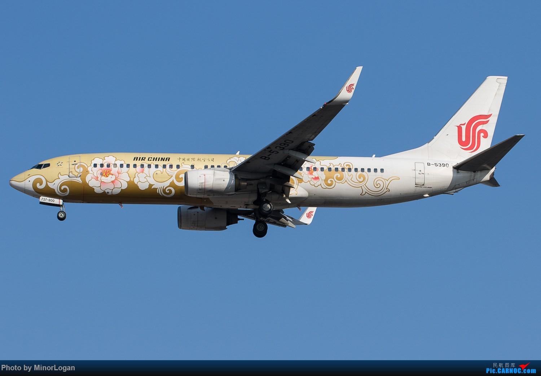 Re:[原创]好久没来了,冒个泡可好 BOEING 737-800 B-5390 中国北京首都国际机场