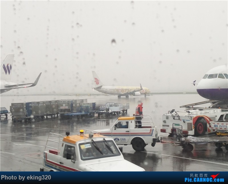 Re:[原创]补发2016年4月海南度假(CKG—HAK—CKG)海航A330初体验 BOEING 737-800 B-5390 中国重庆江北国际机场