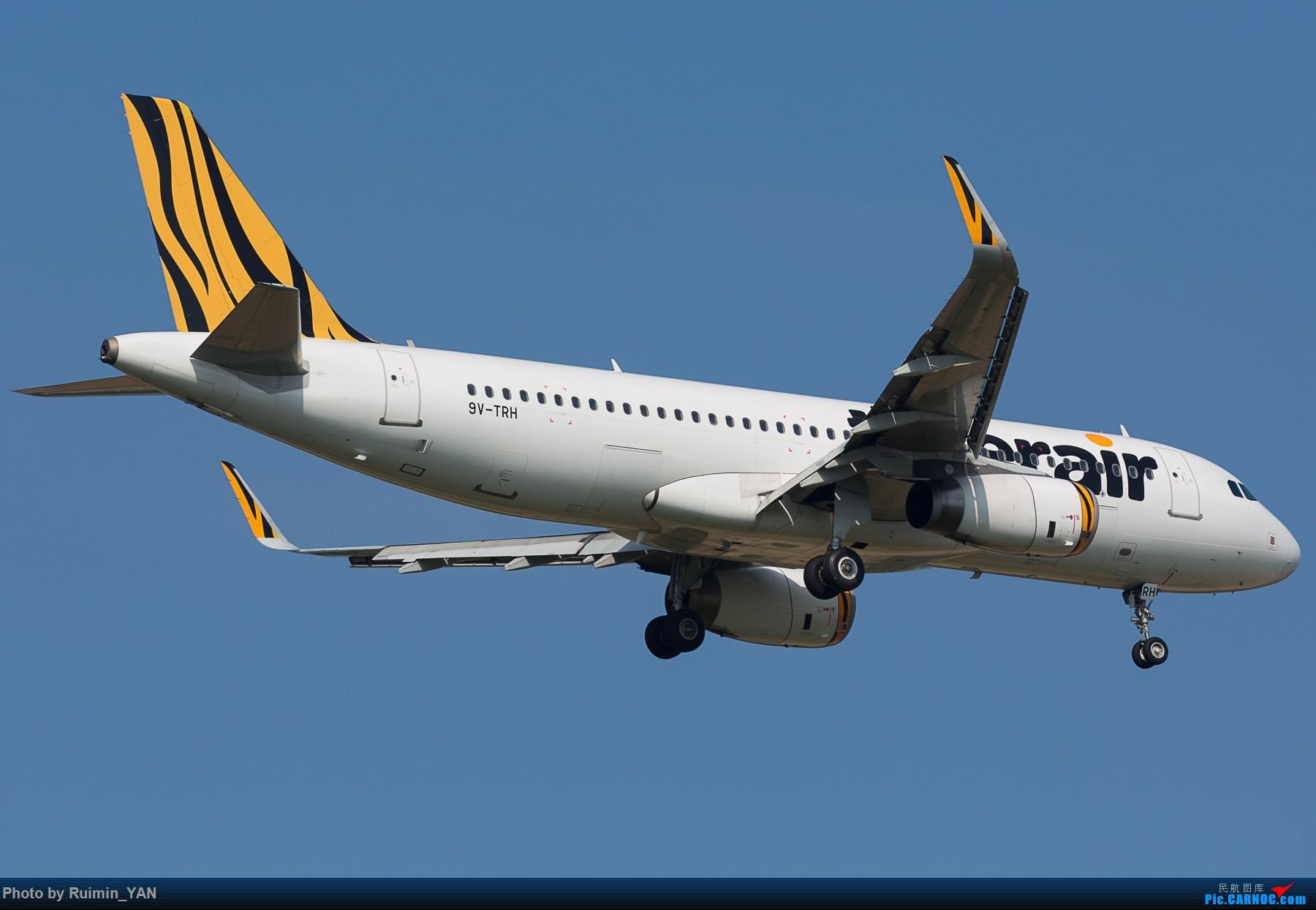 Re:【CAN】新加坡虎航(TR,Tiger Airways)9V-TRH A320