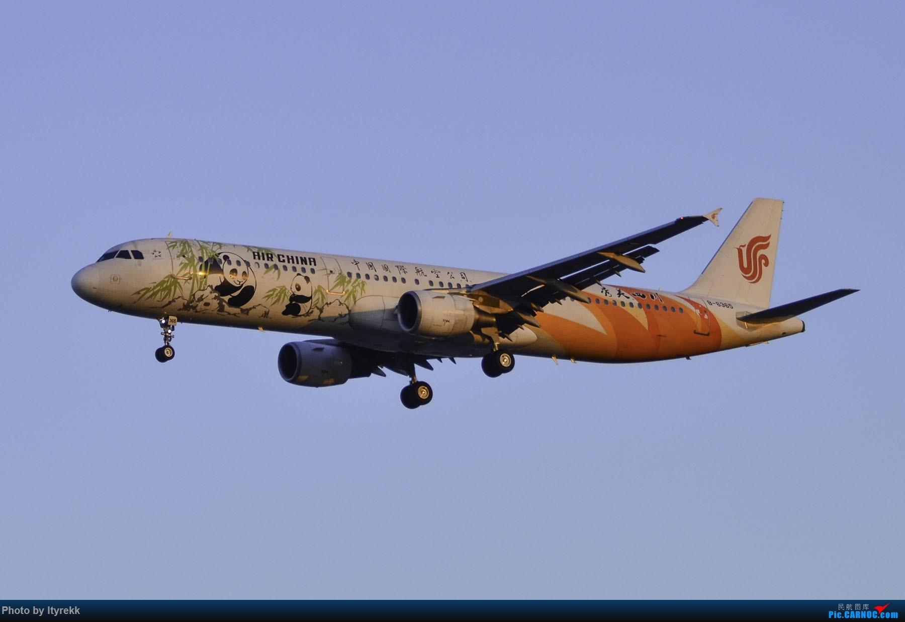 Re:[原创]PEK一日游 收获厦航首架789 B-1566等 AIRBUS A321-200 B-6365 中国北京首都国际机场