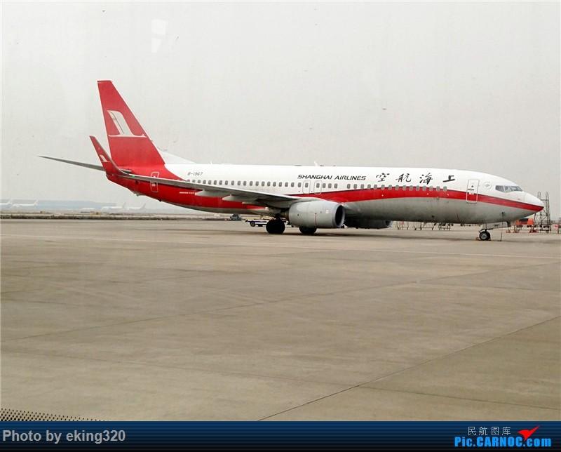 Re:[原创]2016年第三次魔都行(CKG—SHA,PVG—CKG)世界上最大的过山车弯道停车 BOEING 737-800 B-1967 中国上海浦东国际机场