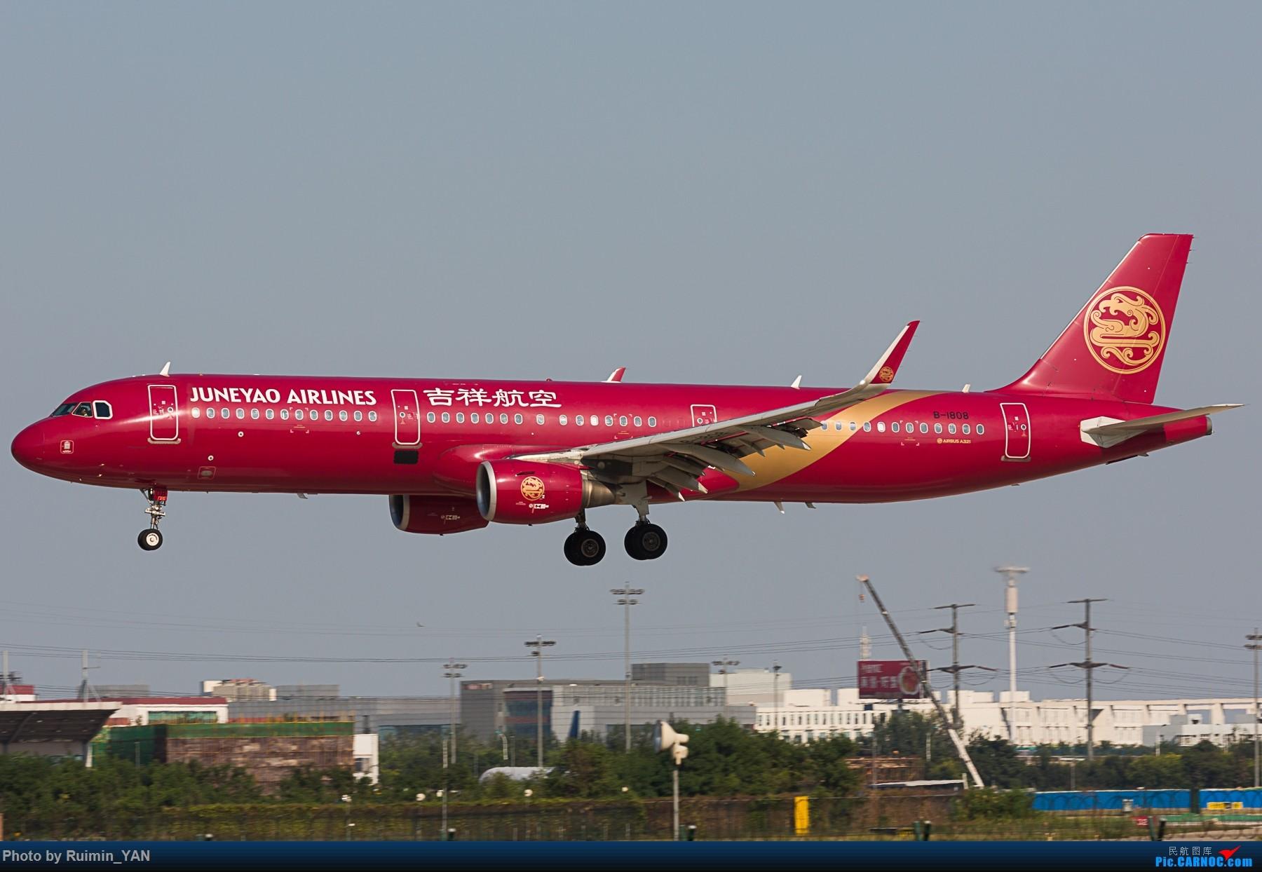 [原创]【TSN】【彩绘】吉祥航空大姨妈 A321 B-1808 AIRBUS A321-200 B-1808 中国天津滨海国际机场