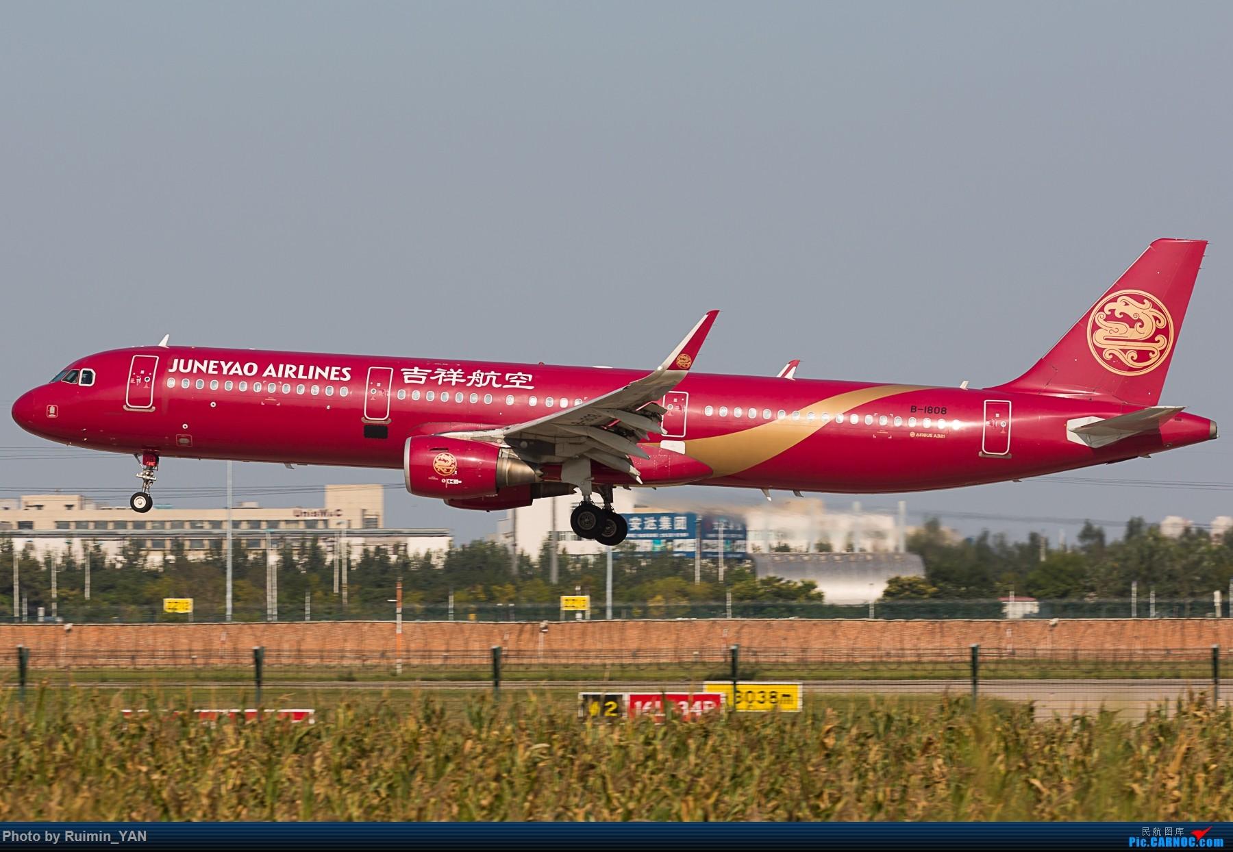 Re:[原创]【TSN】【彩绘】吉祥航空大姨妈 A321 B-1808 AIRBUS A321-200 B-1808 中国天津滨海国际机场