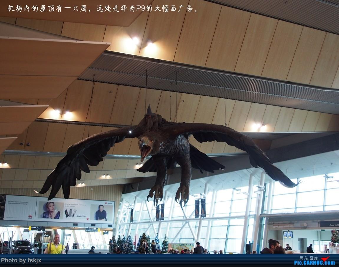 【fskjx的飞行游记☆40】再度启程·长沙·奥克兰·惠灵顿    新西兰惠灵顿机场