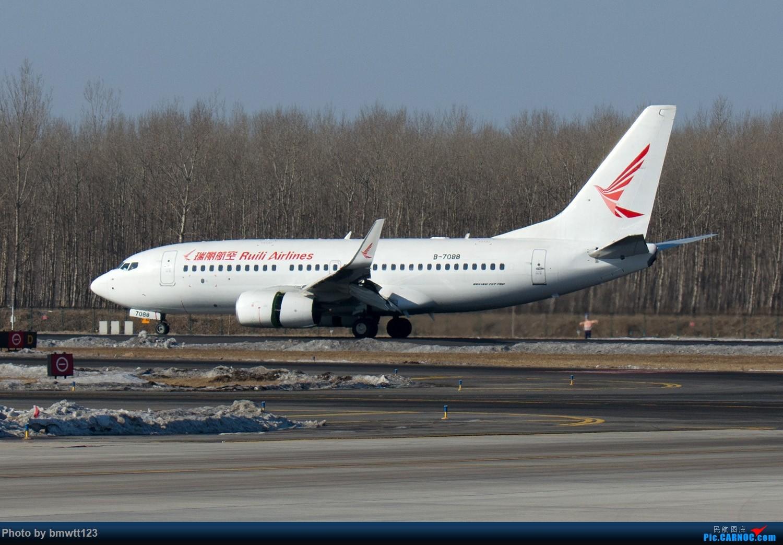 [原创]【SHE沈阳】冬季非常规货一组!彩绘若干。。。 BOEING 737-800 B-7088 中国沈阳桃仙国际机场