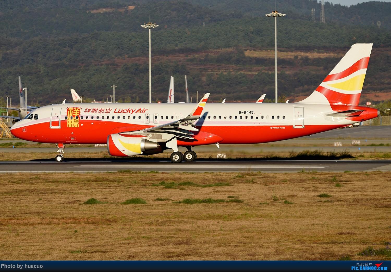 Re:【KMG】继续。。。。。。继续。。。。。。 AIRBUS A320-200 B-8445 中国昆明长水国际机场
