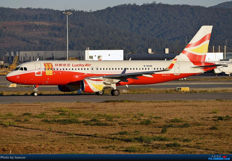 Re:[原创]【KMG】继续。。。。。。继续。。。。。。 AIRBUS A320-200 B-8446 中国昆明长水国际机场