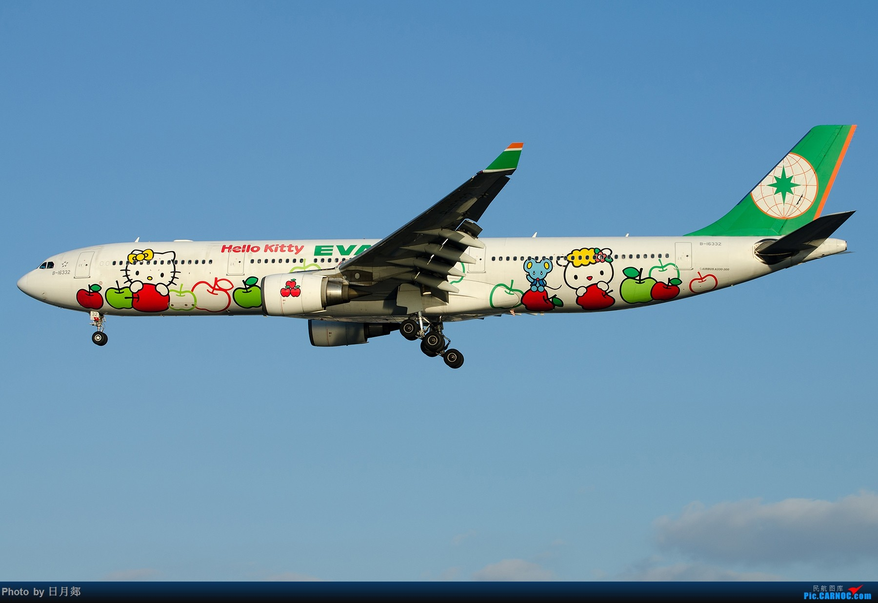[原创]【SHA拍机*1800大图】一图党,B-16332长荣猫机。。。。。。。。。。。 AIRBUS A330-300 B-16332 中国上海虹桥国际机场