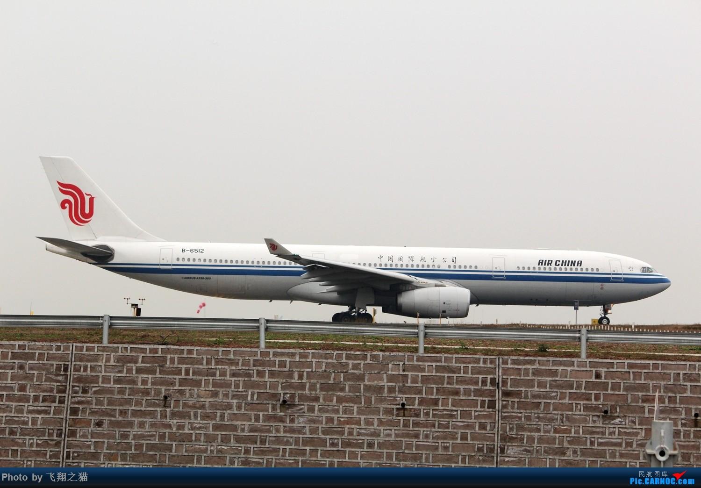 Re:[原创]2017CKG春运合集之一(微笑,星星,火热齐聚山城) AIRBUS A330-300 B-6512 重庆江北国际机场