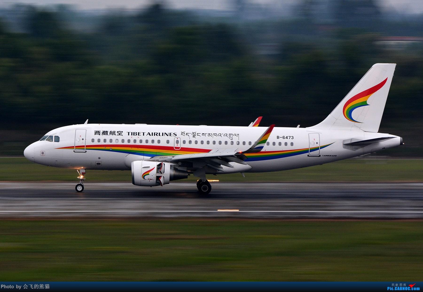 Re:[原创]惨不忍睹 AIRBUS A319-100 B-6473 中国成都双流国际机场