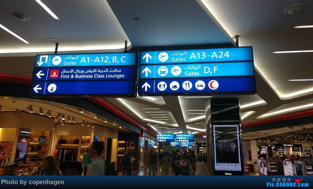 Re:阿联酋航空(Emirates),PVG-DXB-FCO,CDG-DXB-PVG,半年前的出行,Go to Europe! 找大叔机长合照【不断更新】