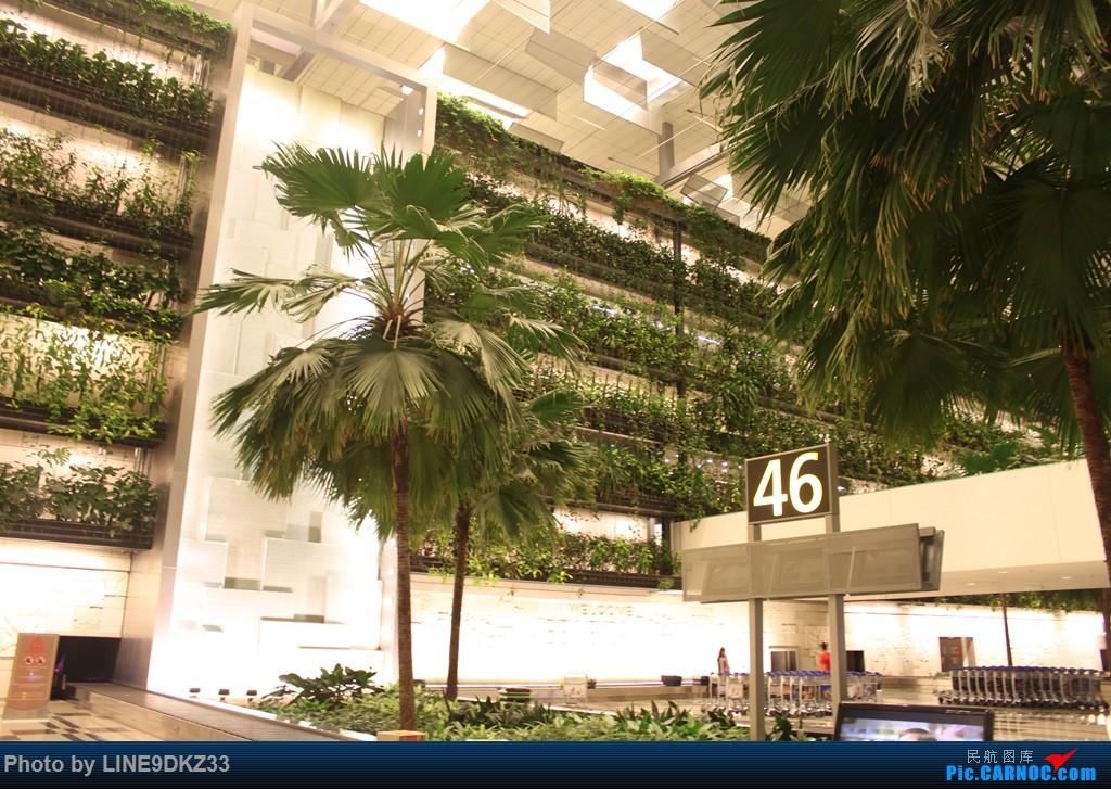 Re:[原创]东南亚运转(下)    新加坡樟宜机场