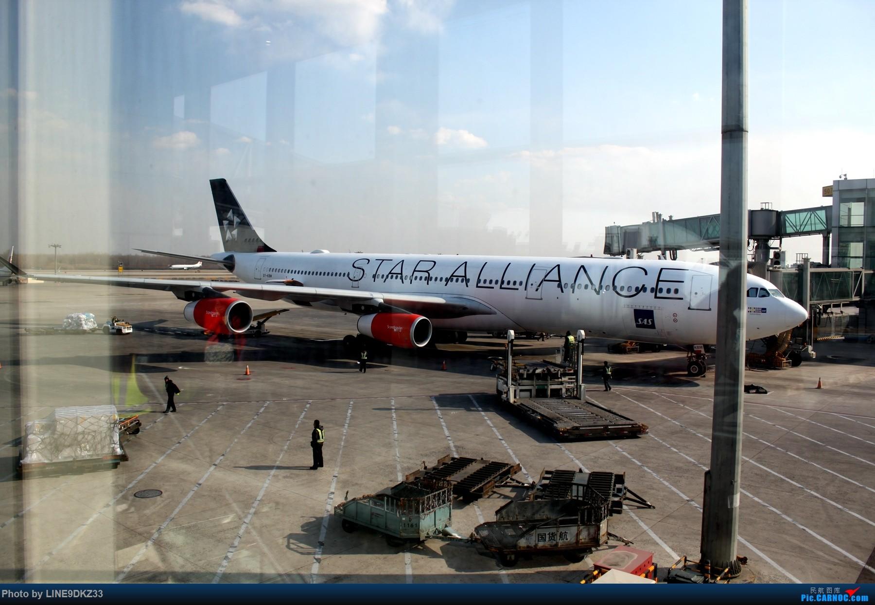 Re:[原创]东南亚运转(下) AIRBUS A340-300 OY-KBM 中国北京首都国际机场