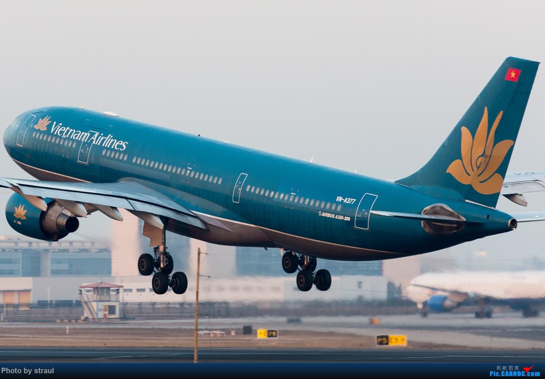 Re:[原创]「多图多机」今日的一些 AIRBUS A330-200 VN-A377 中国北京首都国际机场