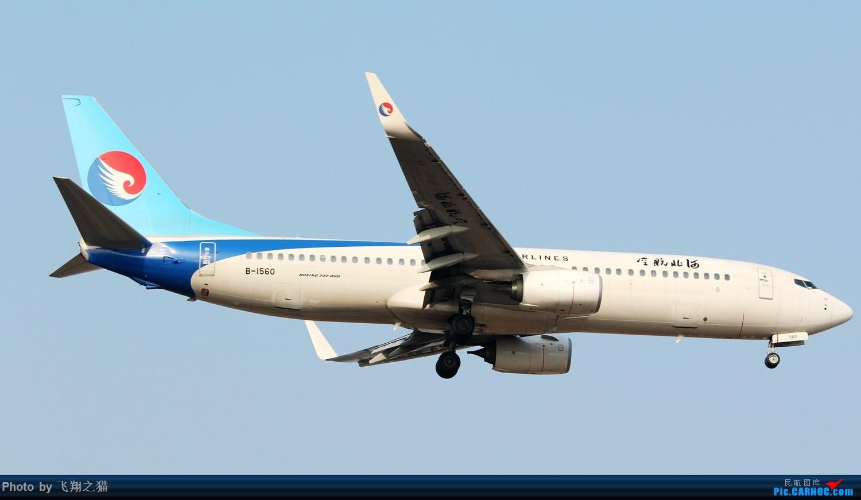 Re:[原创]2017CKG春运合集之三(抓住春运的机会多拍,多练!) BOEING 737-800 B-1560 重庆江北国际机场