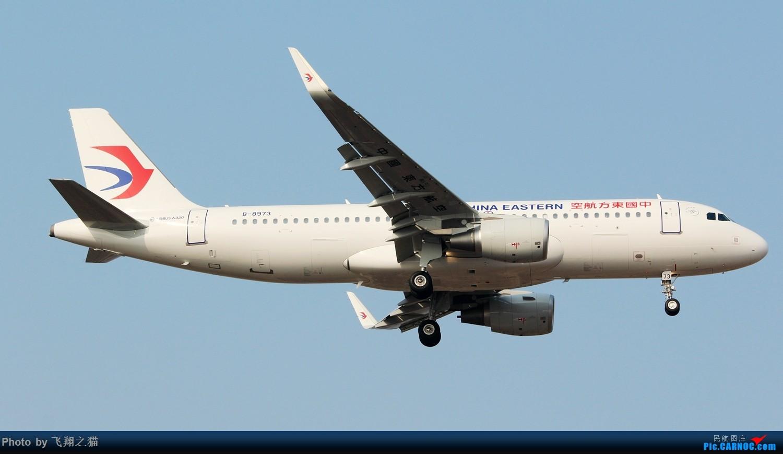 Re:[原创]2017CKG春运合集之三(抓住春运的机会多拍,多练!) AIRBUS A320-200 B-8973 重庆江北国际机场
