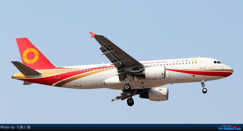 Re:[原创]2017CKG春运合集之三(抓住春运的机会多拍,多练!) AIRBUS A320-200 B-8185 重庆江北国际机场