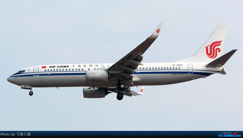 Re:[原创]2017CKG春运合集之三(抓住春运的机会多拍,多练!) BOEING 737-800 B-7897 重庆江北国际机场