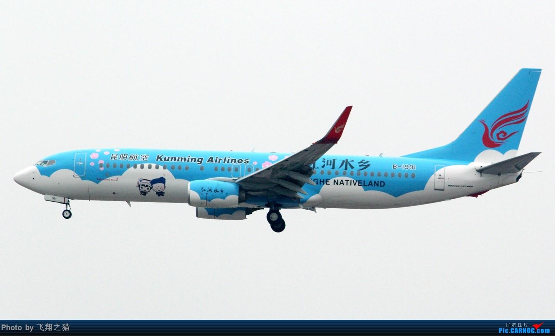 Re:[原创]2017CKG春运合集之三(抓住春运的机会多拍,多练!) BOEING 737-800 B-1991 重庆江北国际机场