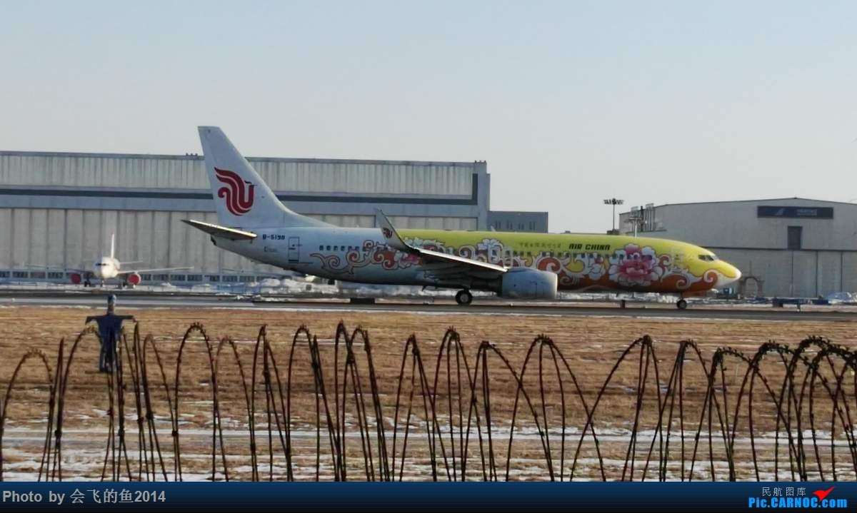 Re:[原创]2017年1月桃仙机场拍机 738