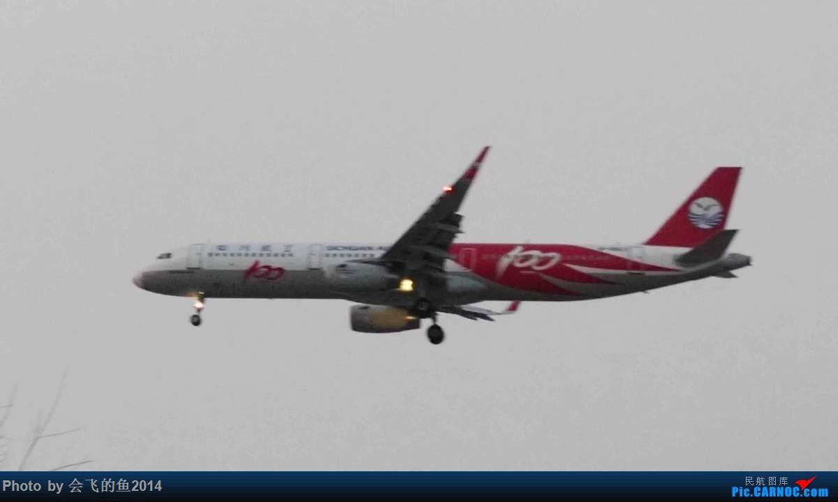 Re:[原创]2017年1月桃仙机场拍机 321