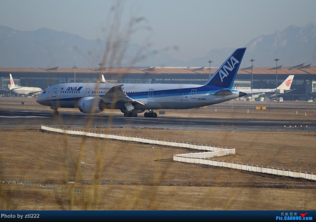 Re:[原创]正月15去PEK拍机,没白去,,稀货好货,,一起上 BOEING 787-8 JA838A 中国北京首都国际机场
