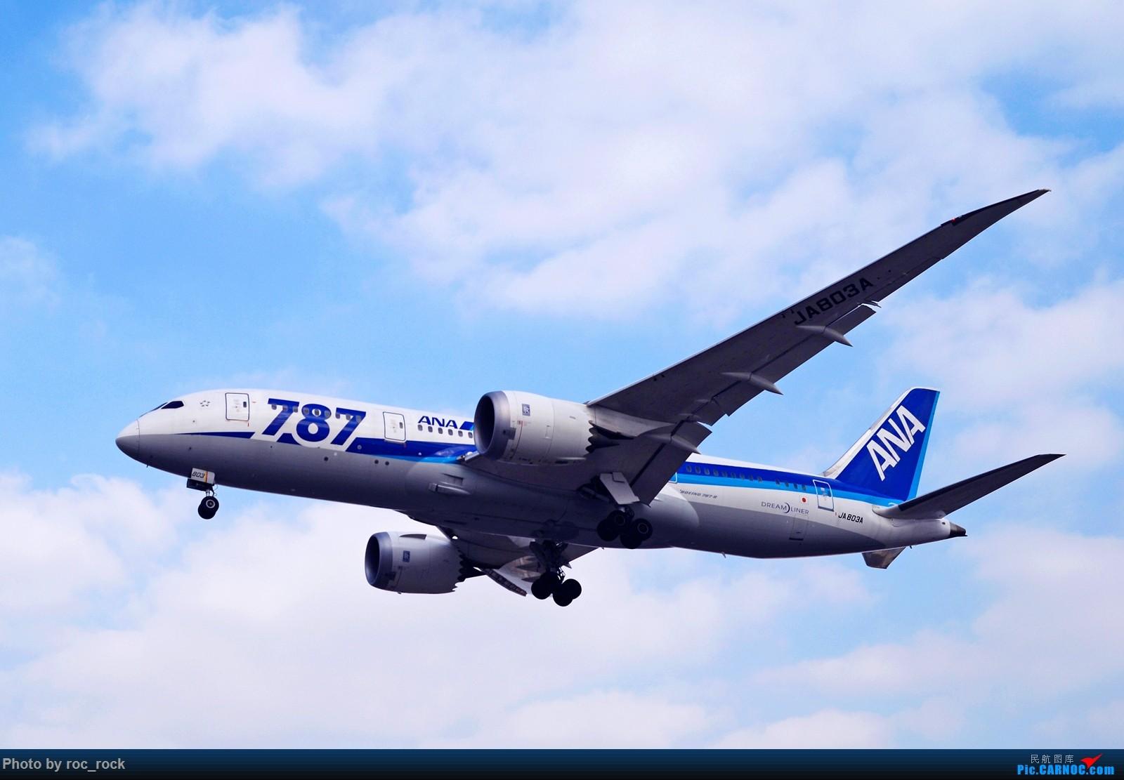 [原创]大连机场的全日空787 BOEING 787-8 JA803A 中国大连国际机场