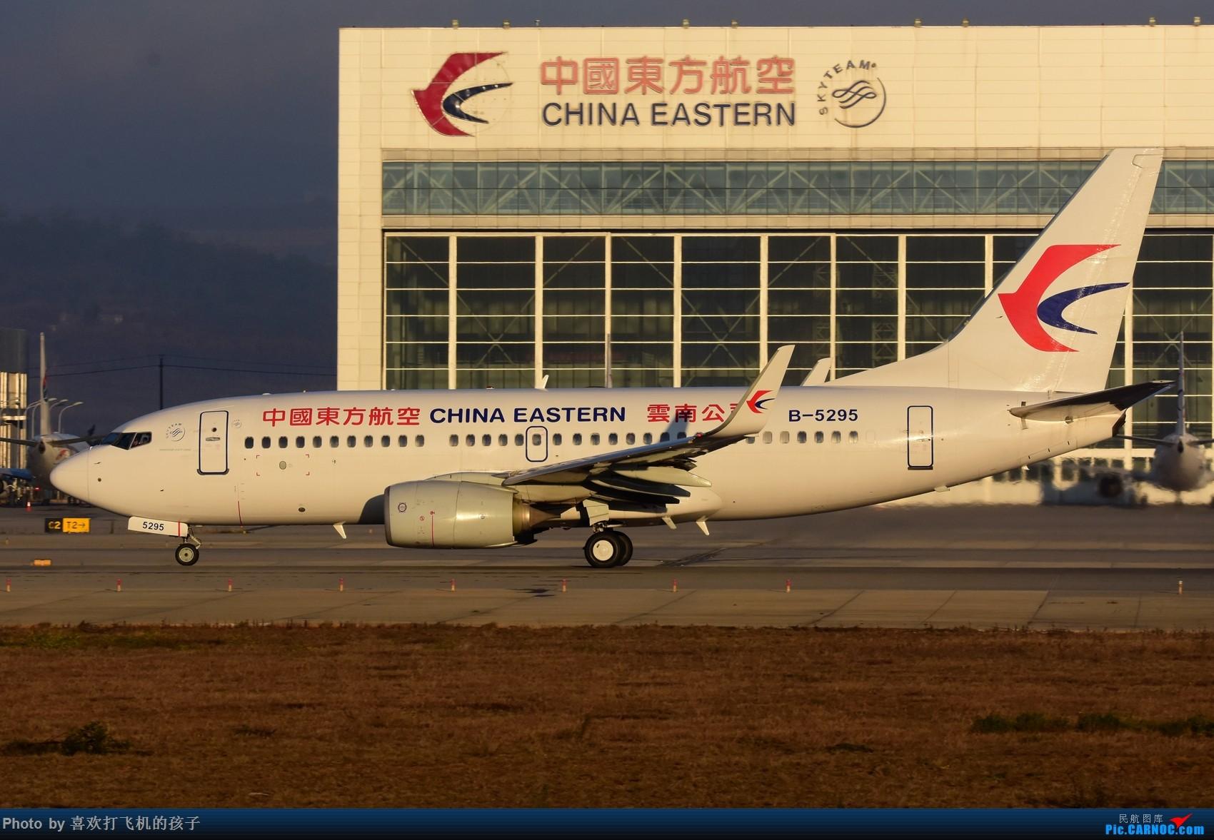 Re:[原创]【机机的飞飞】 KMG昆明长水,年初存货 BOEING 737-700 B-5295 中国昆明长水国际机场