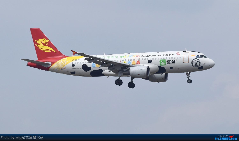 [原创]稀客蛇鸟,泰东763降临nng AIRBUS A320-200 B-6867 中国南宁吴圩国际机场