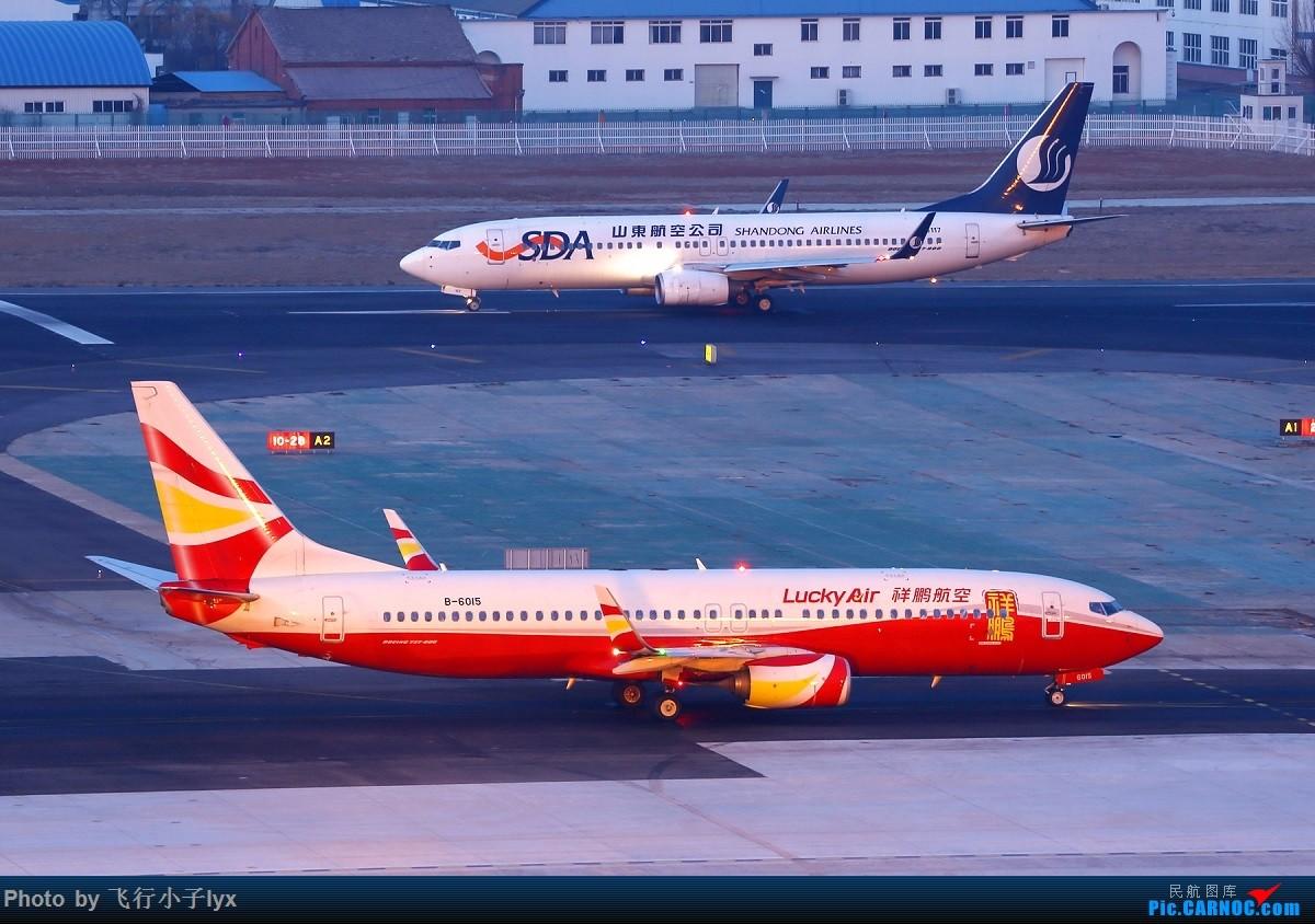 Re:[原创]小夜景十张 BOEING 737-800 B-6015 中国大连国际机场