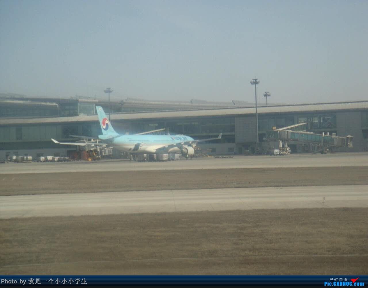Re:[原创]天津-澳门-珠海-天津五日游[上] AIRBUS A330-300 HL-7538 中国天津滨海国际机场