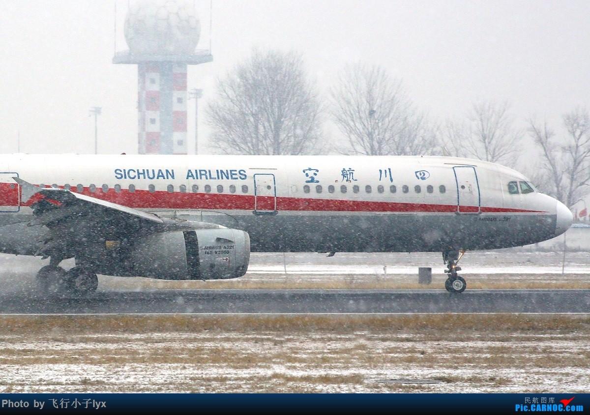Re:[原创]春雪贵如牛 AIRBUS A321-200 B-6590 中国北京首都国际机场