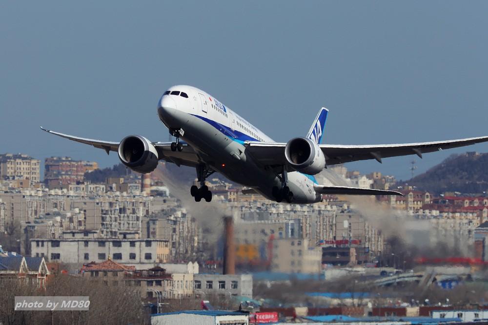 Re:[原创][DLC外场]这两天的大连是好天气 BOEING 787 JA832A 中国大连国际机场