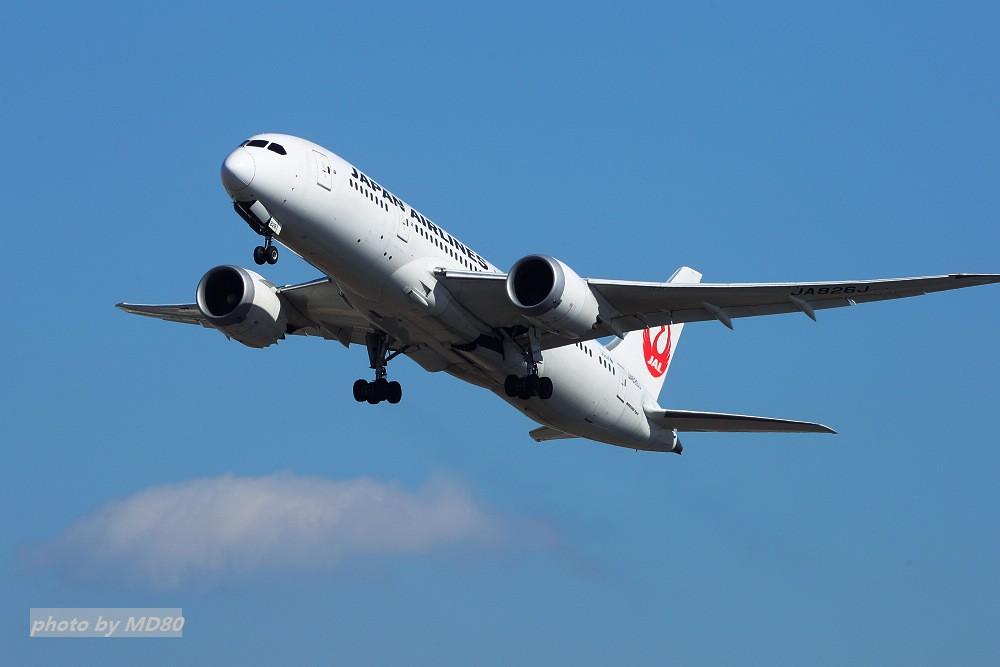 Re:[原创][DLC外场]这两天的大连是好天气 BOEING 787 JA826J 中国大连国际机场