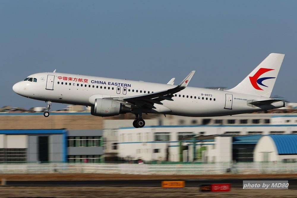 Re:[原创][DLC外场]这两天的大连是好天气 AIRBUS A320-200 B-8973 中国大连国际机场